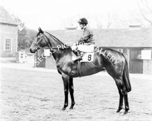 Highclere with Joe Mercer (651-01b)
